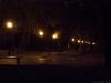 Аллея в парке Шевченко